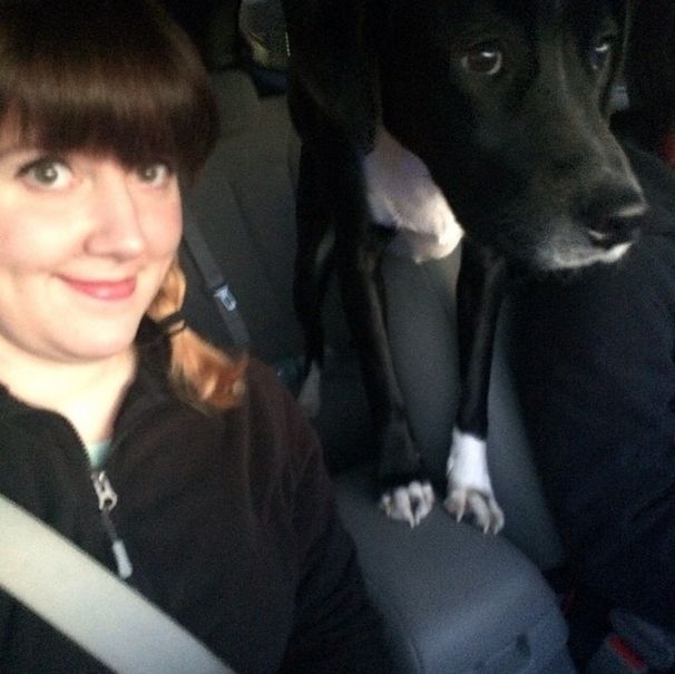 We went to my in-laws' house on Sunday and Mukow was our co-pilot!