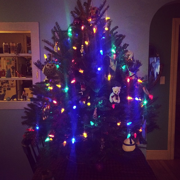 We got our tree super late this year -- a little tabletop one!