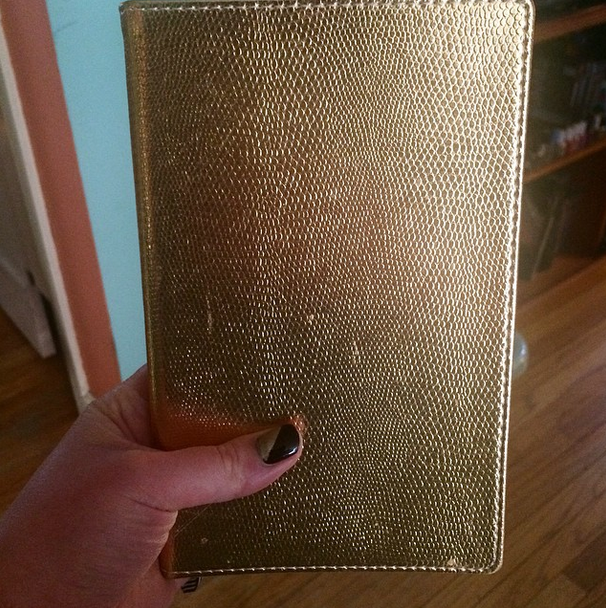 Whipped out the gold snakeskin planner I've been waiting months to use!