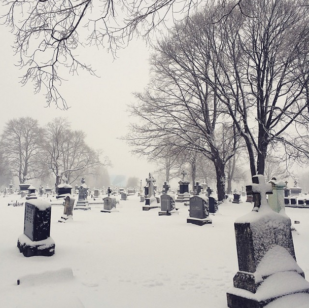 Adventured at Calvary Cemetery in the snow... photos coming soon!